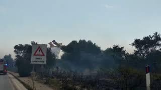 Vasto incendio nell'area di Lama Balice: interviene un Canadair