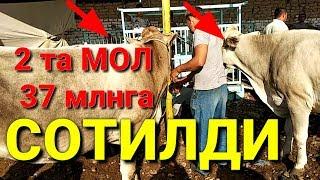 ШАХИДОН МОЛ БОЗОР НАРХЛАРИ