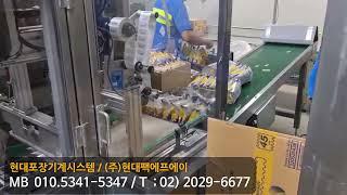 포장기계 _ 파우치 Bag 번들포장기(1x6),  파우…