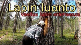 Vaellus Lapin erämaassa- Urho Kekkosen Kansallispuisto Osa 4/5
