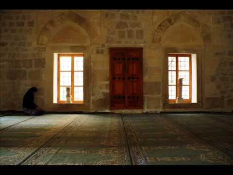 Madzid Abaza -