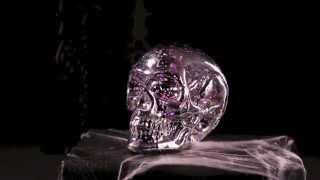 80176 LED Light-Up Skull Thumbnail