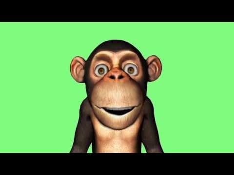 La comptine du singe # Une puce, un pou
