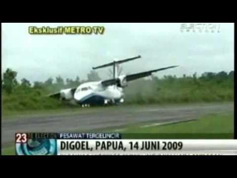 Plane crash caused by dog