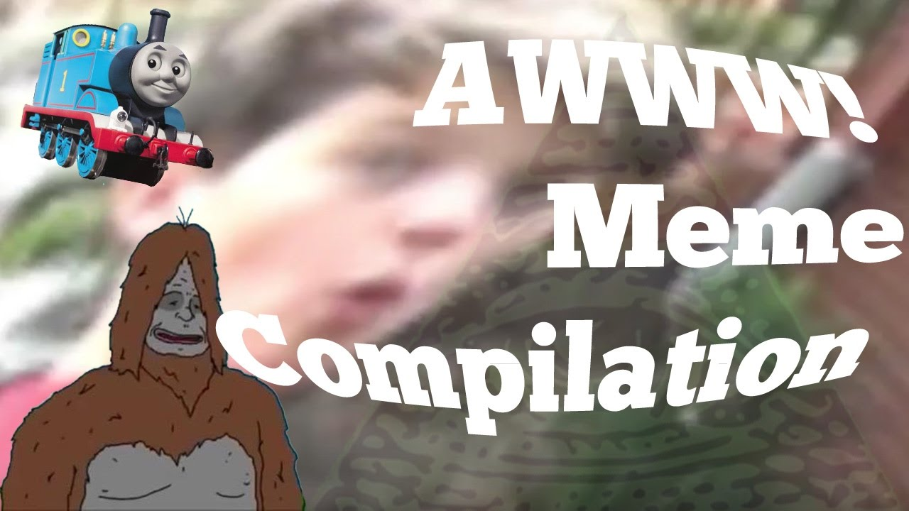 maxresdefault awww! meme compilation youtube,Awww Meme