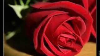 Video Lamice-reem-3OLAYA-Ana meen Ana -عليّة -انا من انا- download MP3, 3GP, MP4, WEBM, AVI, FLV Agustus 2018