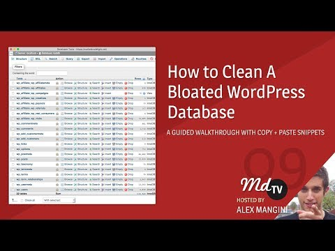 Walkthrough: How to Cleanup a Bloated WordPress Database
