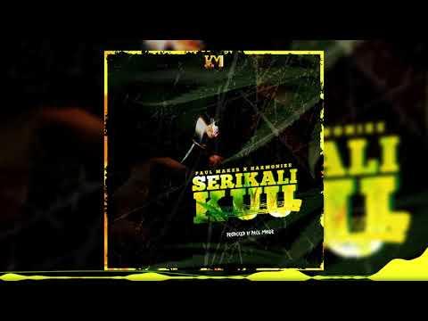 Paul Maker x Harmonize - Serikali Kuu (Official Audio)