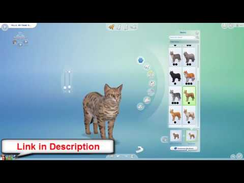 The Sims 4 Cats & Dogs Serial numbers & Keygen