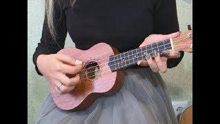 Гавайская гитара укулеле что это за инструмент и как на нём играть