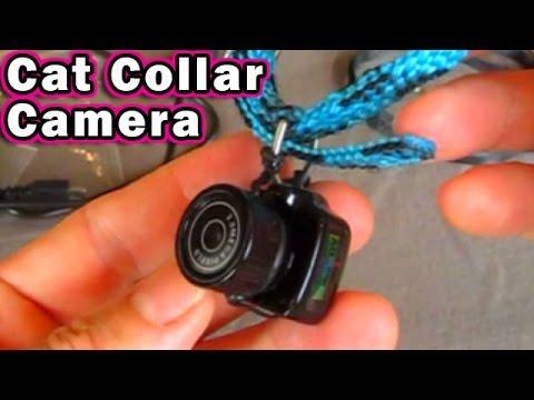 Dog Collar Camera