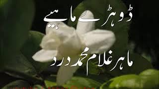 Download Video marry din jo a gye Mahar Ghulam Muhammad Dard MP3 3GP MP4