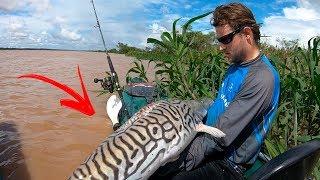 O RIO DOS GIGANTES! Pescaria com isca viva. Parte 2