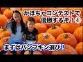 【アメリカ☆かぼちゃコンテストで1位を狙え!①】パンプキンパッチ編