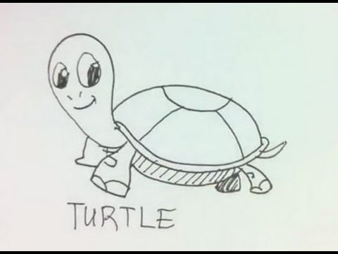easy draw turtle - photo #36