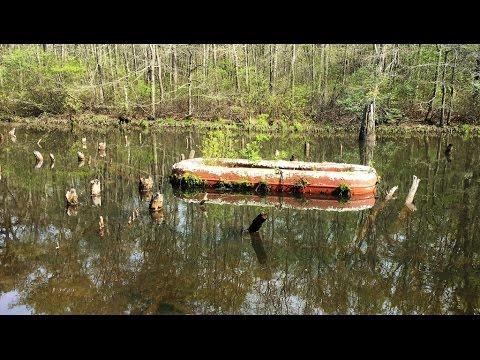 Weird & Creepy Beaver Pond Wall Township Monmouth County NJ