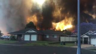 Terrifying Footage Of Sydney Fire