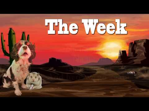 The Week (Featuring: Viggo The Dog & Hamster)