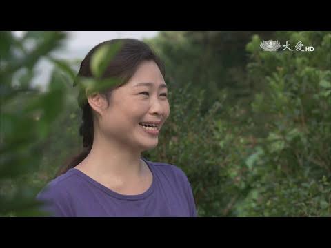 [若是來恆春] - 第36集 / Coming to Hengchun