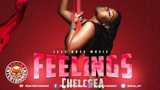 Chelcsea - Feelings [Audio Visualizer]
