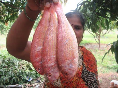 SEA FISH FRY Prepare My Wife In My Village | VILLAGE FOOD