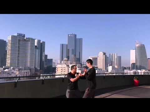 Wan Kam Leung Practical Wing Chun (France) - Sifu Lee Teck Meng - Practicing with a view