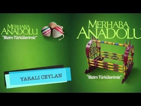 Nurhan Özcan - Yaralı Ceylan
