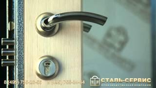 видео двери металлические с зеркалом