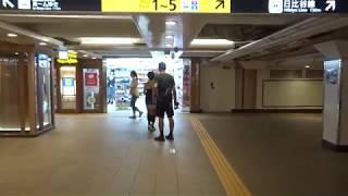 改札間の移動だけで2分以上かかる東京メトロ上野駅の銀座線改札から日比谷線改札まで歩いた風景