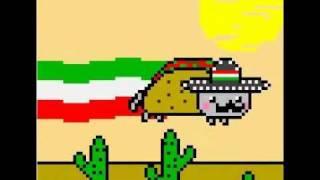 [Mexican Nyan Cat♥]