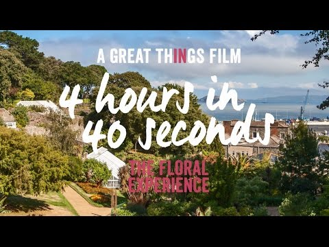 The Floral Experience - Great Days Out In Guernsey