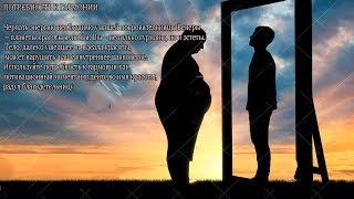 Как похудеть ТЕЛЬЦУ