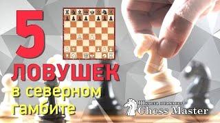 Шахматы. 5 дебютных ловушек в Северном гамбите за белых