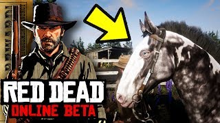 Best Early Game Horse Rdr2 Online