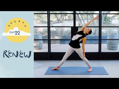 Day 22 - Renew |  BREATH - A 30 Day Yoga Journey