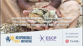 Shared responsibility, sustainability and traceability for commodity sourcing: the case of RMI