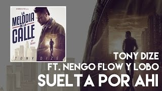 Tony Dize - Suelta Por Ahi ft. Ñengo Flow y Lobo [Official Audio]
