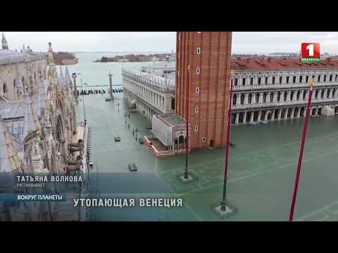 Венеция утопает: объявлено чрезвычайное положение. Вокруг планеты