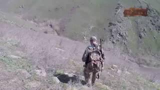 Охота на медведя в горах Казахстана