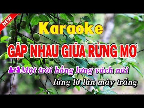 Gặp Nhau Trong Rùng mơ Karaoke nhạc sống