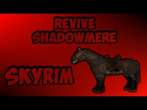 How to Get Shadowmere Back if It Dies in Skyrim   Works on Consoles