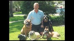 Stovall's Obedience in Texas - Best Dog Training in Houston, TX