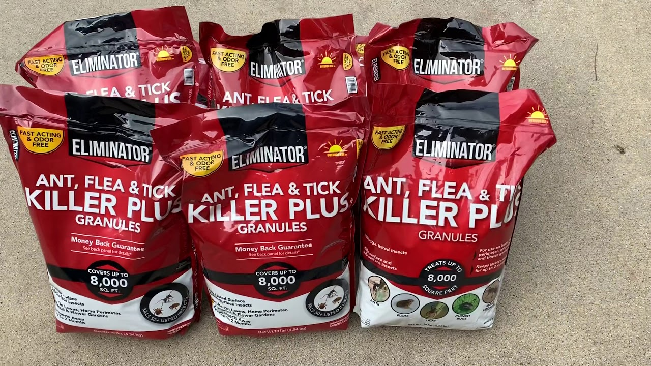 Walmart Clearance Ant Flea Tick Killer Youtube
