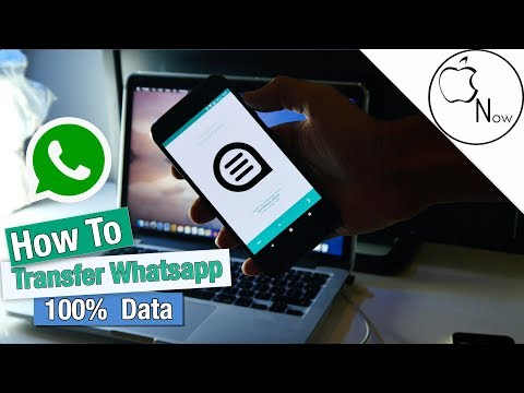 (Complete Guide) How To Transfer Whatsapp Data From IOS To Android! - Without Any LOSS!