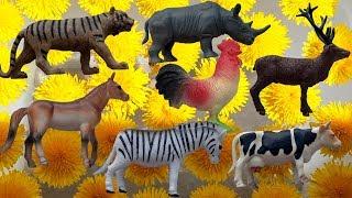 ДИКИЕ ЖИВОТНЫЕ превращаются в ДОМАШНИХ ЖИВОТНЫХ Счет от 1 до 20 Учим название животных на английском