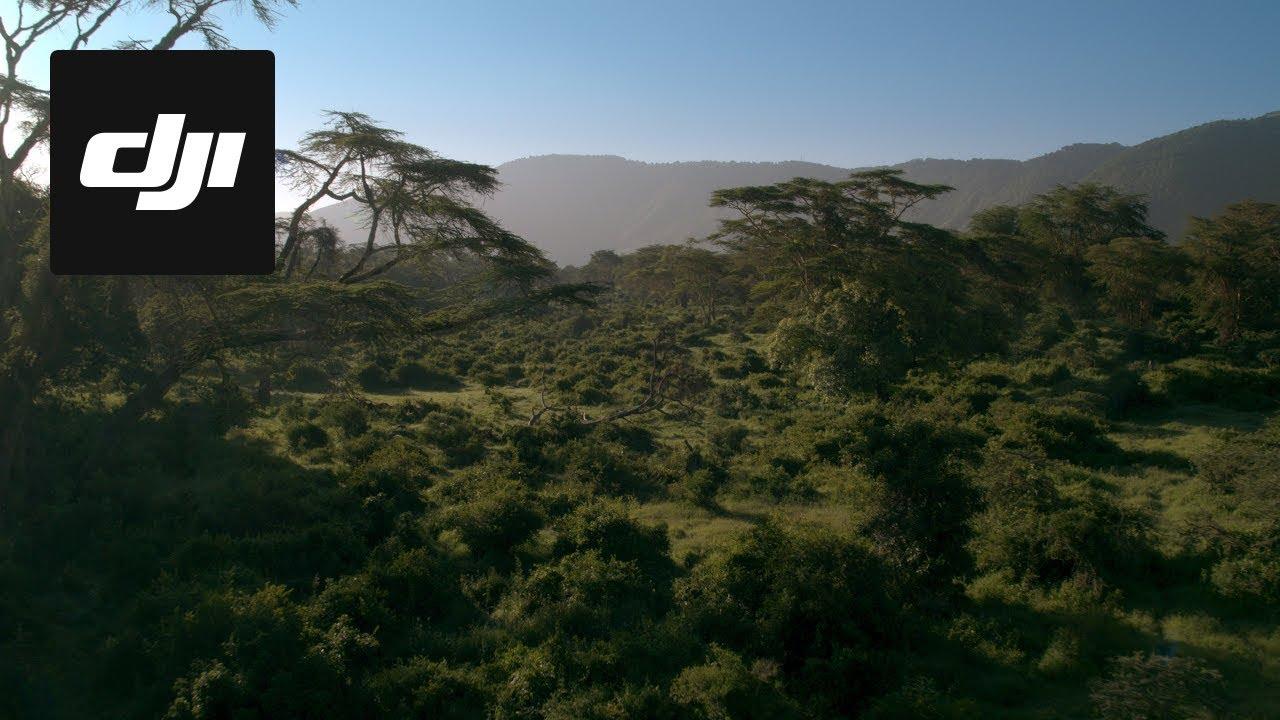 Dji Stories Capturing Africa S Garden Of Eden Doovi