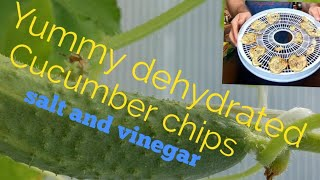 Dehydrated cucumber chips salt and vinegar