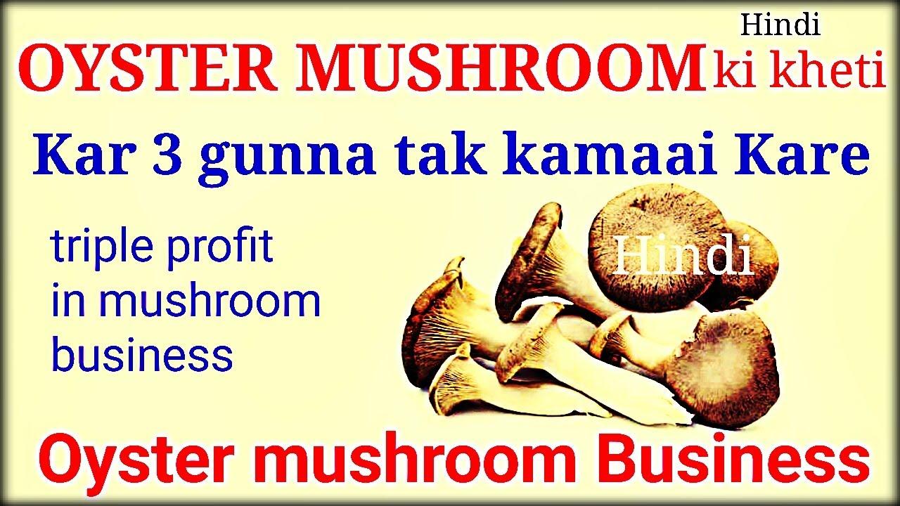 Start Oyster Mushroom Farming in India | Profit In Oyster Mushroom Business  | in Hindi