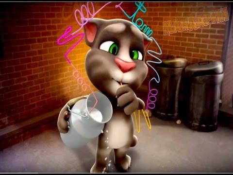 Мультфильм весёлый кот