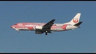 那覇空港の南端近くにある瀬長島で飛行機の発着が大迫力で見ることがで...